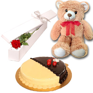 (50) Bear, Cake & Red Rose