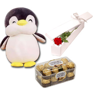 Penguin Doll W/ Chocolates & Red Rose