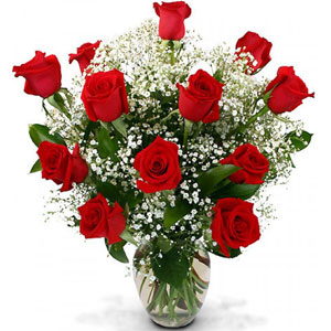(16) 1 dozen red roses in a vase