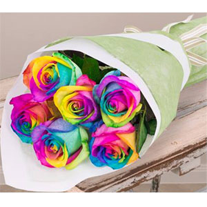 (18) 6pcs Rainbow Rose in a bouquet