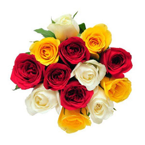 12 pcs Multicolor roses in bouquet