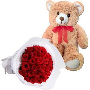 (28) 3 dz red roses w/ Teddy bear