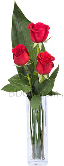(002) 3 Pcs Red Roses in vase